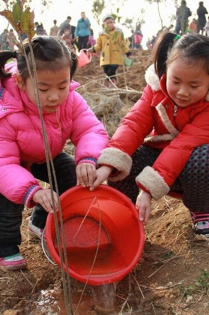 3.12日植树节活动,赠送儿童话剧《灰姑娘》门票!