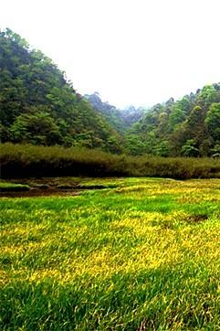 【望鱼海子山】9月16日 雅安望鱼海子山徒步一日游