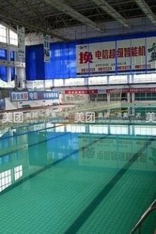游泳玩水,奥林匹克游泳馆