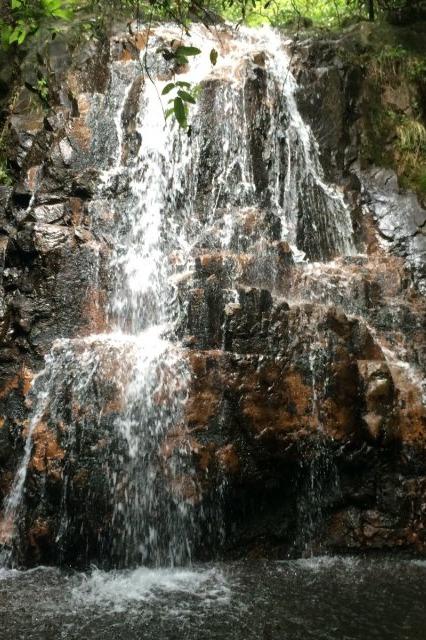 7月3日临安龙上村溯溪爬山游泳