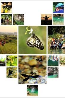 周末相约】英德蝴蝶谷溯溪探险、广东大峡谷穿越二日游