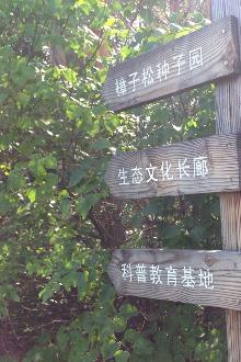金秋远足—万亩种子园