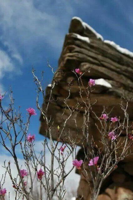 """户外登翠峰西山,观赏自然奇迹""""飞来神石""""、杜鹃花!"""