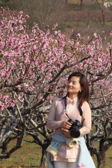 巢湖烔烊首届桃花节 月亮湾湿地公园一日游