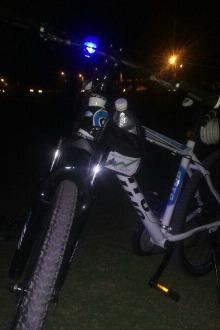 骑自行车去湿地公园