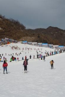 2月14号情人节南召猿人山不限时滑雪约伴!