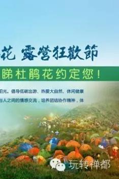 免费活动:4月16日登天露山赏杜鹃花,游禅龙峡