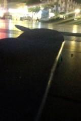 开学前狂欢滑板趴