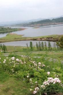长寿湖钓鱼露营