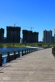 上海、杭州双飞三日游