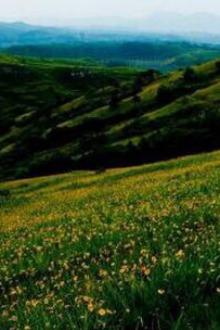 花山赏菊和十八潭一日游活动
