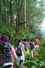 5.29穿越广州天鹿湖森林公园