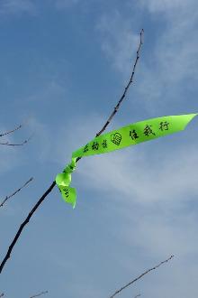 周六活动(12月17日)乱窜游子山
