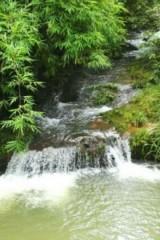 玉林六万山森林公园露营(11月12号)