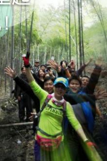 森林公园徒步活动