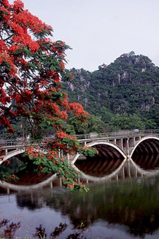 2015年4月5日新路线#中国最美绿道#肇庆星湖骑行