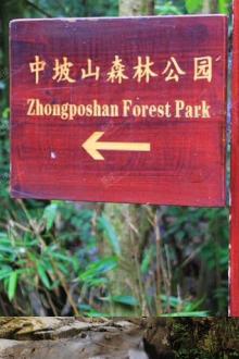 9.5中坡山森林公园瀑布