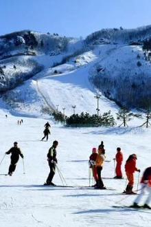 本周六车友会特价滑雪