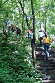 相约临春岭公园爬山活动