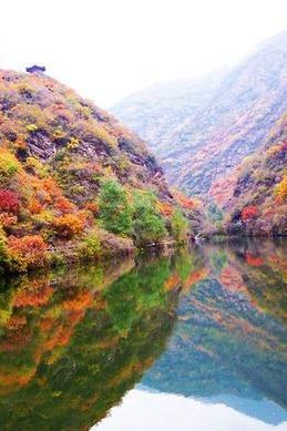 11月5日周六,双龙峡,坐小火车赏红叶,休闲游。