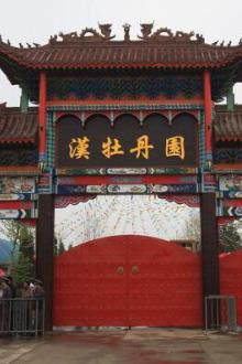 周六9日汉牡丹园周日10号济南云梯山活动