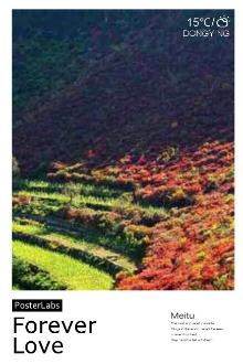11月7号(星期六)博山姚家峪驴道爬山看红叶。群号:374234615