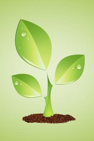 绿色蔬菜、食品知识交流和讨论 蔬菜赠送
