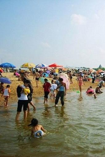 营口鲅鱼圈海边一日游,单身游玩活动!