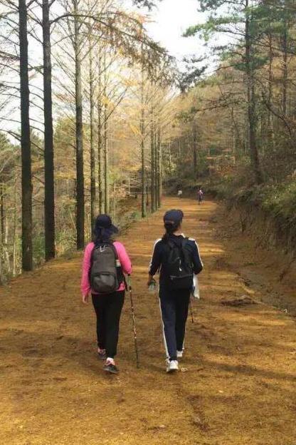 (上海野友户外)11月5日栖霞坑徒步感触唐诗之路