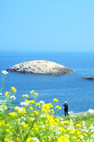 看真正的碧海蓝天8月6-7日渔山岛两日游