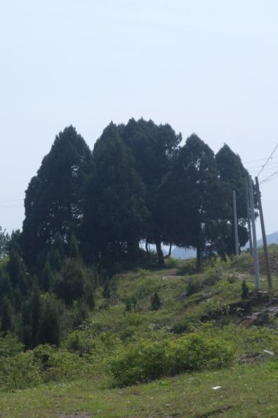 贵州省黔东南施秉县双井镇凉伞凉风坳