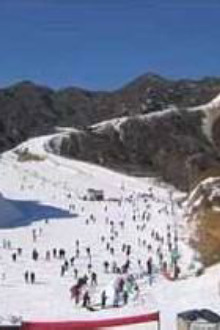 一起龙凤山滑雪嗨皮吧