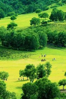 7月24-26日:贡格尔草原、阿斯哈图石林、灯笼河草原、