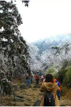 1月10日登顶嵊州四明山主峰金钟山赏冰雪世界一日游