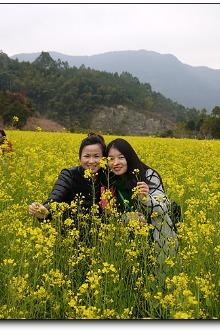 漳州长泰赏油菜花、交友、古村落骑行1日游