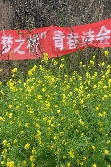 """天涯此时——2015年度漯河市""""梦之桥""""国庆诗会"""