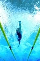 Hello成都游泳5月12日周四省馆免费游泳教学