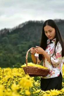 10月30日 黄山深度伤金丝菊,样产土楼晒秋一日游