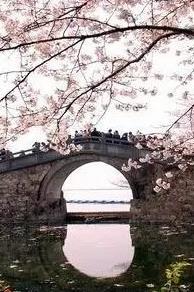 举行巢湖至南京一日游活动