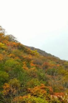 【多彩户外】12月10日周六快活林水库黑石头村穿越