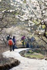 2月21日(周日)户外踏青徒步最美乡村