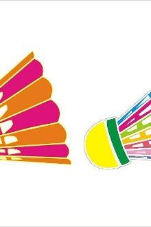 海口四中1,3,5晚上8-11点羽毛球活动