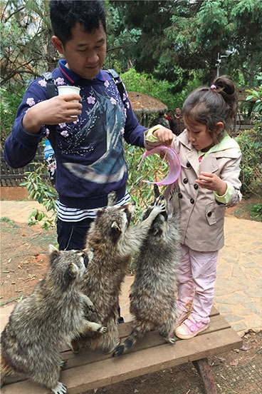 动物园奇幻夜周末亲子动物夜习性探秘调查体验营