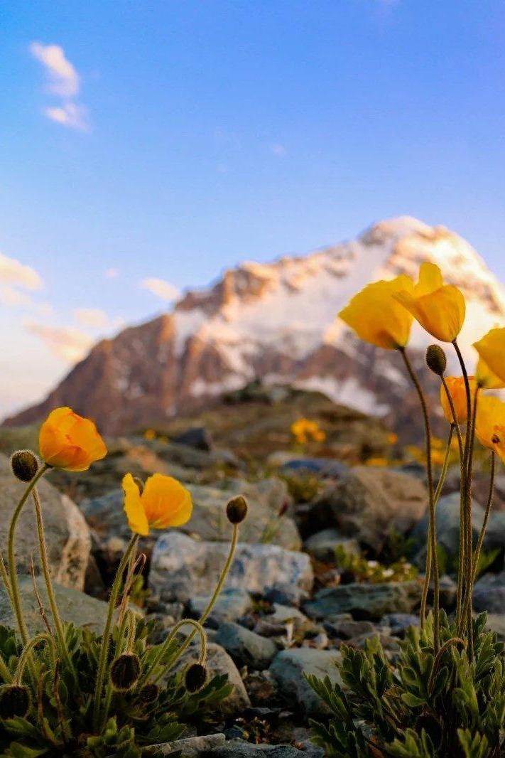 【兜峰户外】新疆博格达五峰徒步穿越