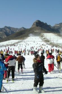 周日驴友滑雪活动,欢迎参与