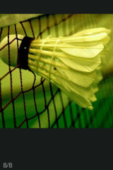 周日晚上七点羽毛球活动