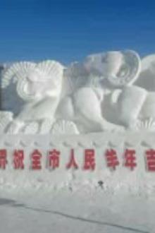 骑驴来鹤岗冰雪大世界一日游