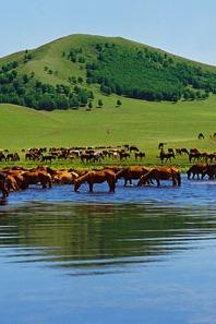 【徒步天下】策马追风,相约在美丽的乌兰布统【扎营】