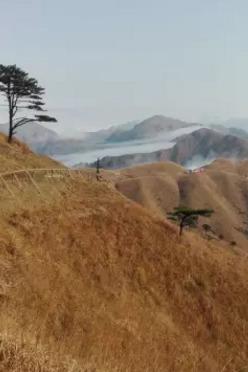 12月3日周六穿越惠东大南山(金色小武功山)