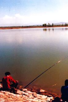 双泉湖野炊